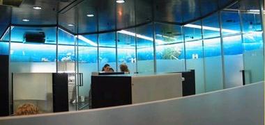 Стоматологическая клиника Swiss smile, г.Цюрих, Швейцария.