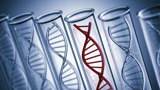 Диагностика рака молочной железы и яичников: на что способны генетические исследования?