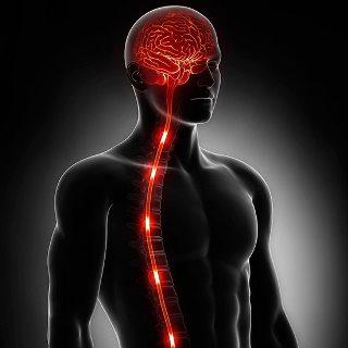 Найдено лекарство, способное замедлить развитие бокового амиотрофического склероза на 25%. Исследование американских ученых