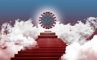 Новые результаты исследований коронавируса: термостойкий, изменчивый и самовосстанавливающийся