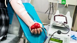 Врачи спасают от COVID-19 с помощью плазмы крови переболевших и плазмафереза