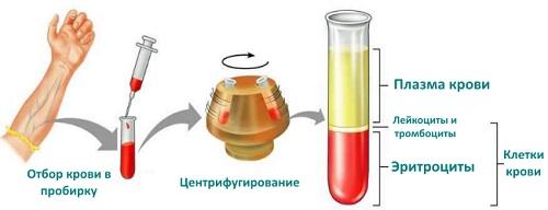 Как может помочь плазма крови в лечении COVID-19?