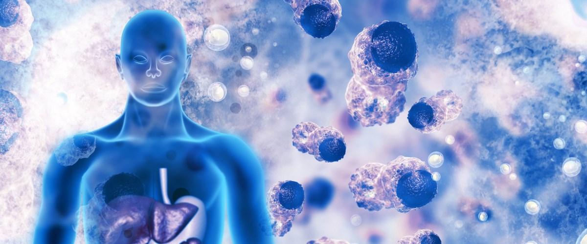 Рак заразен? От телефона бывает опухоль мозга? Можно ли лечить рак травами? Самые популярные мифы о раке