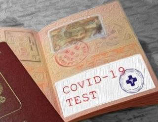 Прививка от коронавируса как пропуск за границу: где планируют ввести ковид-паспорта и почему вокруг них такие споры?