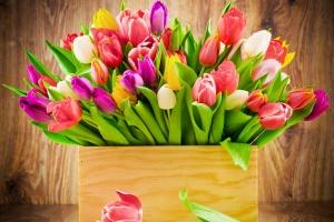Дорогие дамы, поздравляем Вас с Международным женским днем!